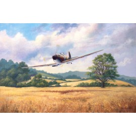 English Summer Spitfire Mk1
