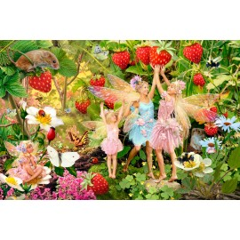 Summer Fairies