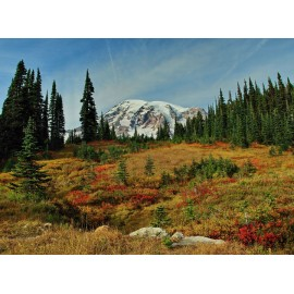 Fall on Rainier