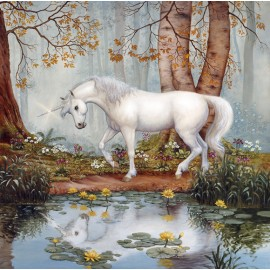 Unicorn Forest Pool