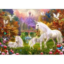 The Castle Unicorns