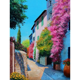 Bougainvillea in Grimaud