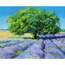 Trees and Lavenders